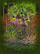 Rural Florida Posters - Jungle Palm Poster by Susanne Van Hulst