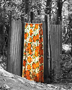 Shower Curtain Photo Framed Prints - Jungle Shower Framed Print by RC Photography