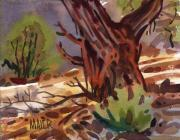 Canyon Paintings - Juniper Shade by Donald Maier