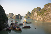 Ha Long Posters - Junks in Halong Bay Poster by Ei Katsumata