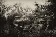 Old Trucks Digital Art - Junkyard Dogs III by Off The Beaten Path Photography - Andrew Alexander