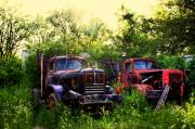 Old Trucks Digital Art - Junkyard Dogs by Off The Beaten Path Photography - Andrew Alexander