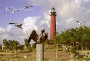 Inlet Pyrography - Jupiter Inlet Lighthouse by Richard Nickson