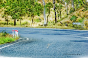 Australia Digital Art - Just Another Bend In The Road by Vicki Ferrari Photography