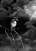 Crow Digital Art - Just Another Moonlight Mile by Rhonda Strickland