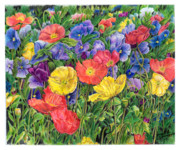 Poppies Field Drawings - Just Because by Jeanette Schumacher