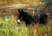 Donkey Digital Art - Just Chillin by RC DeWinter