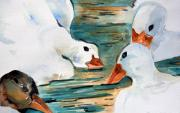 Goose Drawings - Just Duckie by Mindy Newman