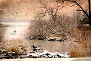 Winter Scene Digital Art Prints - Just Ducky Print by Mary Timman
