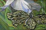 Colored Pencil Mixed Media Metal Prints - Just Hanging Out Metal Print by Mindy Newman