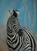 Zebra Pastels - Just Looking by Linda Harrison-parsons
