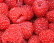 Red Fruit Photos - Just Raspberries by Carol Groenen