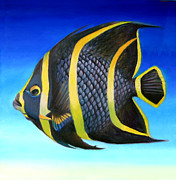 Angelfish Paintings - Juvenile French Angelfish by Nancy Tilles