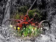 Garden Plow Photos - Juxtaposition by Priscilla Richardson