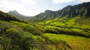 Pastureland Framed Prints - Kaaawa valley and Kualoa Ranch Framed Print by Dana Edmunds - Printscapes