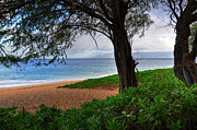 Beach Photograph Prints - Kaanapali Beach Print by Kelly Wade