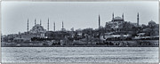 Blue Mosque Posters - Kadikoy Cruise Poster by Joan Carroll