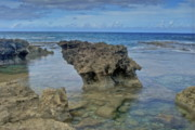 Point State Park Prints - Kaena Point  7868 Print by Michael Peychich