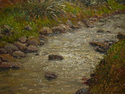 Terry Perham Prints - Kaikorai Stream After Rain Print by Terry Perham