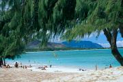 Sunbathe Framed Prints - Kailua Beach Park Framed Print by Peter French - Printscapes