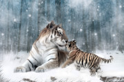 Tiger Digital Art Prints - Kaiser Katrina and the Kiss Print by Julie L Hoddinott