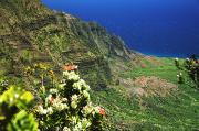 Kalalau Valley Posters - Kalalau Valley Cliffs Poster by Peter French - Printscapes