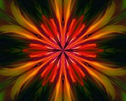 Kaleidoscope Art - Kaleidoscope Floral 121011 by David Lane