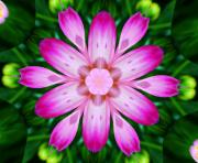 Kaleidoscope Art - Kaleidoscope of a Dahlia by Cathie Tyler