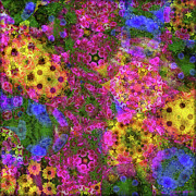 Multi Colored Prints - Kaleidoscopes Of Flowers Print by Mary P. Siebert