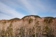 Ledge Photo Posters - Kancamagus Highway - White Mountains New Hampshire - Rocky Cliff Poster by Erin Paul Donovan