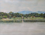 Waterfowl Paintings - Kandalama Lake by Ifthikar Cader