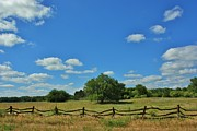 Bluesky Prints - Kansas Country with blue sky   grass fence and trees Print by Robert D  Brozek