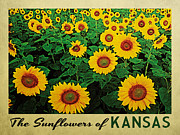 Sunflowers Digital Art - Kansas Sunflowers by Vintage Poster Designs