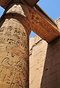 Archaeology Photos - Karnak Temple Columns by Michelle McMahon