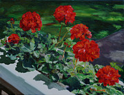 Red Geraniums Framed Prints - Kates Geraniums Framed Print by Heather Douglas