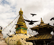 Flock Of Bird Art - Kathmandu Monkey Temple by @ Didier Marti