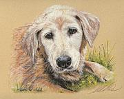 Best Friend Pastels Posters - Katie Poster by Terry Kirkland Cook