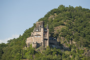 Rhine Valley Posters - Katz Castle On A Hillside Poster by Greg Dale