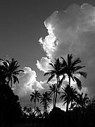 Mary Deal - Kauai Storm Clouds
