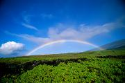 Contentment Prints - Kaupo Rainbow Print by Ray Mains - Printscapes