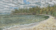 Tropical Art Pastels Posters - Kawela Bay Poster by Patti Bruce - Printscapes