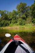 Green Boat Prints - Kayak on a Forested Lake Print by Steve Gadomski