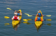 Jackets Prints - Kayakers in Bar Harbor Maine Print by Louise Heusinkveld