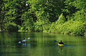 Otsego Lake Posters - Kayakers Paddle In The Headwaters Poster by Raymond Gehman