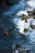 White Water Kayaking Posters - Kayaking Along Coastline Poster by Ron Dahlquist - Printscapes