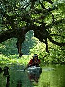 Kayak Originals - Kayaking in Dismal Swamp by Charles  Ridgway