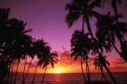 Overhang Prints - Keawekapu Sunset Print by Ron Dahlquist - Printscapes