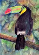 Keel-billed Toucan Print by Arline Wagner