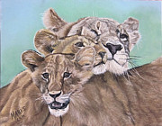 Cubs Pastels Posters - Keeping Watch Poster by Maris Sherwood