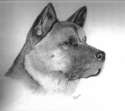 Dogs Drawings - Keisha by Rosanna Maria